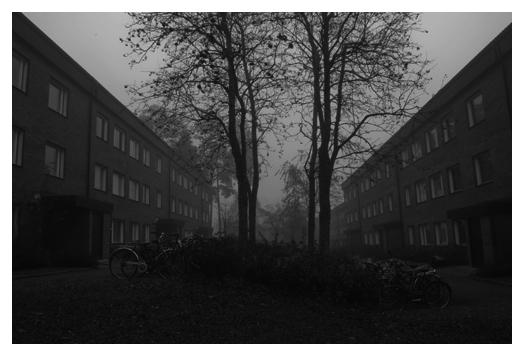 dimma över Granbacken