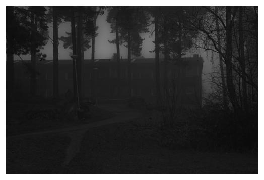 granbacken i dimma