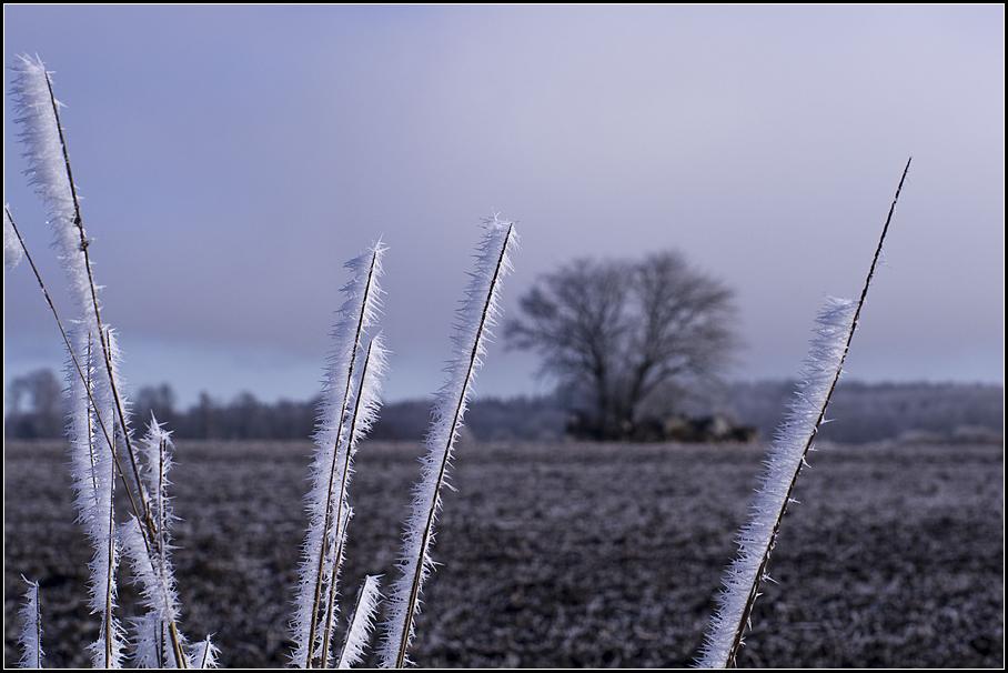 Vintertecken